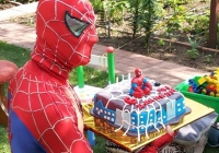 spider-s-tortom-1