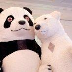 Белый Медведь и Панда — куклы-великаны   в Одессе