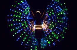 Шоу световых бабочек, Пиксельное шоу